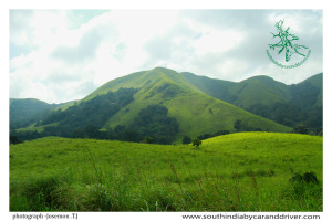 munnar tours Imunnar car and driver