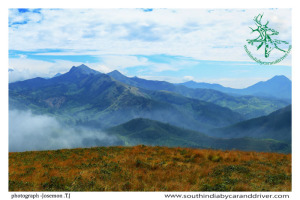 munnar Western Ghats I tea factery I South India By Car and Driver
