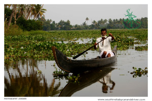 Alleppey kumarakom backwather tours