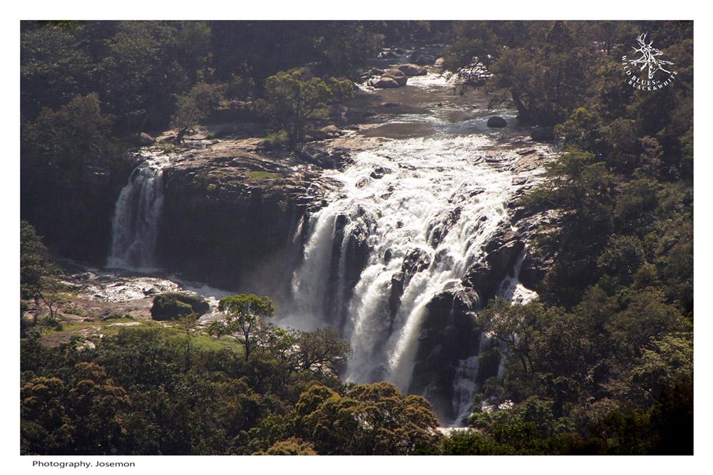 chinnar Thoovanam Waterfall near marayur munnar