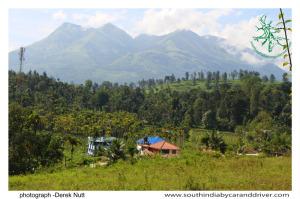 Wayanad scenery